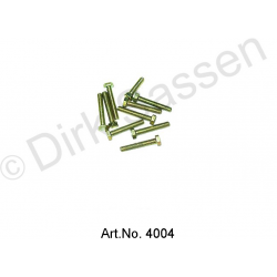 Screw, M5 x 40 (10 pieces)
